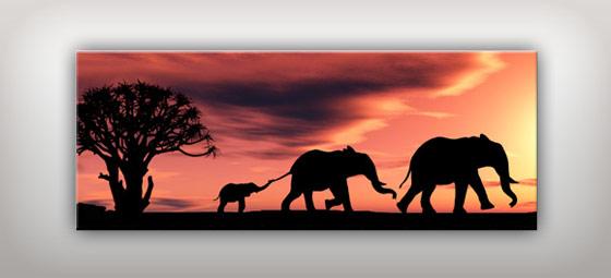 Afrika Bilder im Großformat