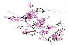Wandbilder Blumen Wandbilder  Frühlingsblüten als Illustration