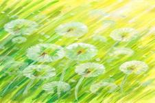 Kunstdrucke Leinwand Wandbilder  Kunstdruck Aquarell sommerliche Wiese auf Leinwand gedruckt