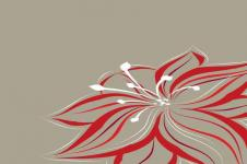 Kunstdrucke Leinwand Wandbilder  Abstrakte Illustration Blumenmotiv