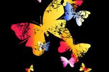 Wandbilder Retro und Lounge Wandbilder  Colourful Butterflies Bunte Schmetterlinge
