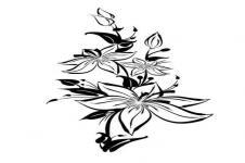 Kunstdrucke Leinwand Wandbilder  Illustration Blumen Schwarz Weiß
