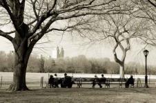 Wandbilder New York Wandbilder  Der Central Park von New York