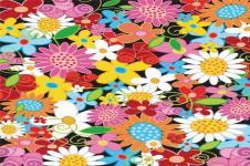 Leinwandbilder Blumen Wandbilder  Bunter Mix aus Frühlingsblumen Illustration