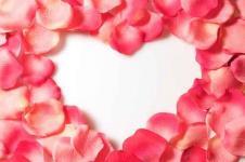 Wandbilder Blumen Wandbilder  Herz aus Rosenblättern
