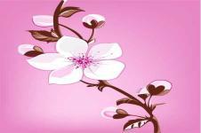 Wandbilder Blumen Wandbilder  Zeichnung einer Orchidee auf rosa Hintergrund